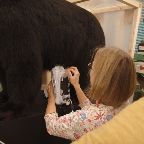 Lisa checking