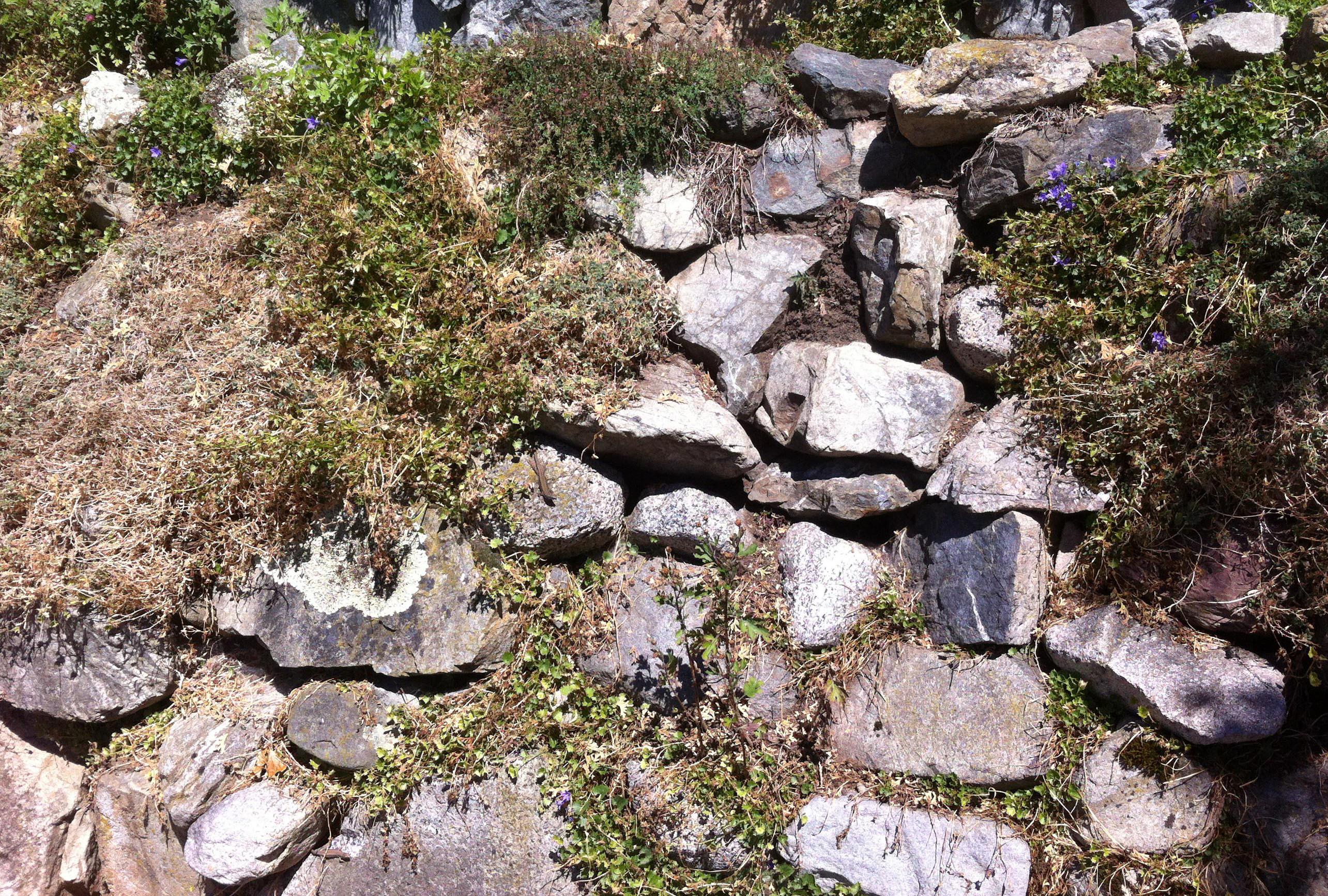 rock wall 2L