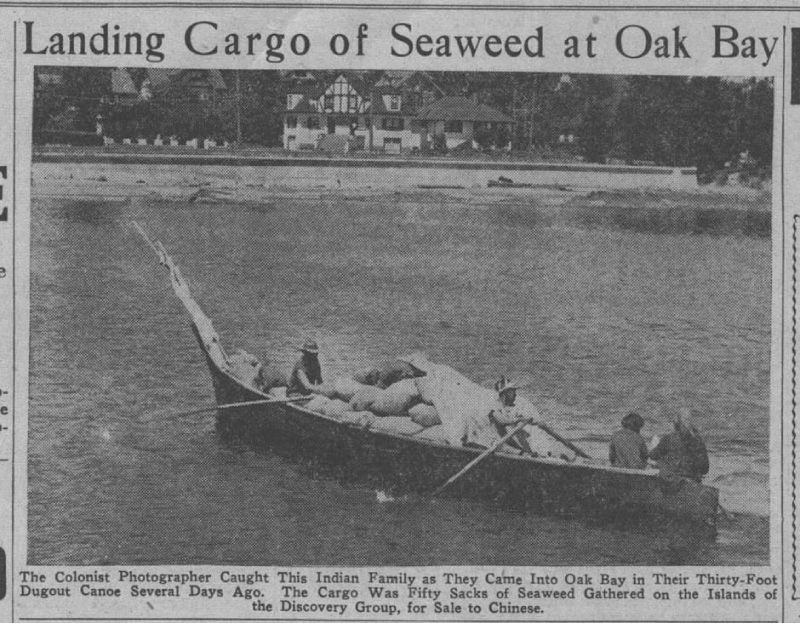 Freight Canoe Hauling Seaweed from the Discovery Islands.